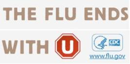 Flu 2011
